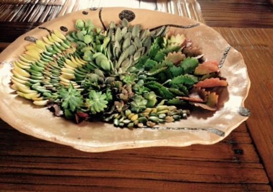 prato cerâmica